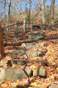Stairs_to_the_top_of_aEast_rock
