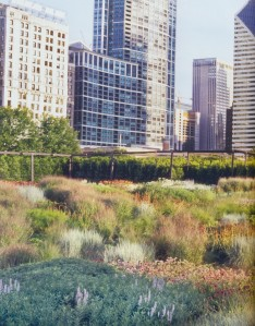 Chicago's Lurie Garden at Millenium Park