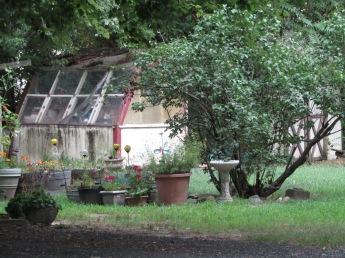 backyard envi
